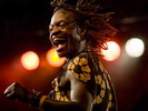 Sneak preview foto-expo — Konga Vibes op Couleur Café 2007