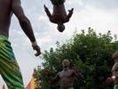 Circus Baobab (Sfinks Mixed 2008)