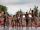 Jungle Arts (Sfinks Mixed 2010)