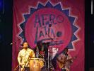 Bonga (Afro-Latino festival 2011)