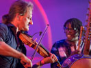 Bao Sissoko, Mousa Niang & Wouter Vandenabeele (Colora festival 2016)