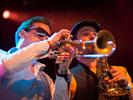Merdan Taplak Orkestar (Sfinks Mixed 2010)