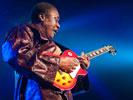 AfroCubism (Sfinks Mixed 2011) —Djelimady Tounkara